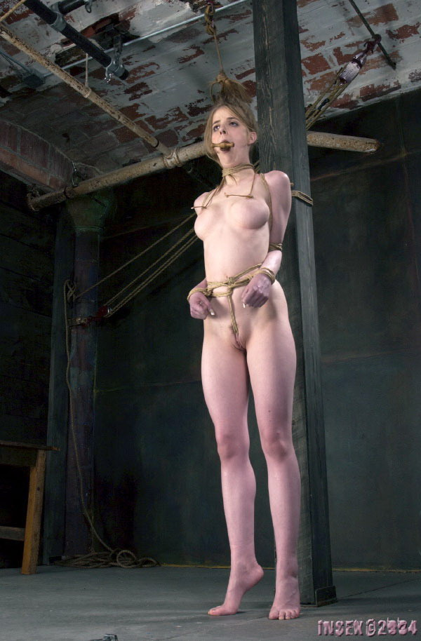 Pony girl bondage stories
